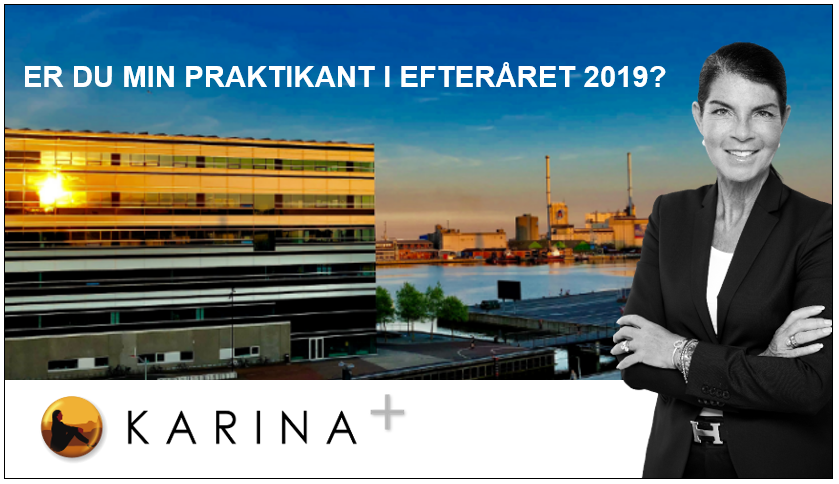 Er du den næste kommunikationspraktikant hos Karina+?